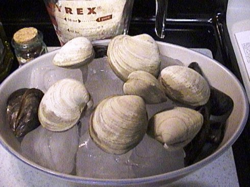 Clams and Mussels on ice